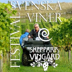 vinfestival_med_logo