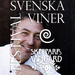 vinfestival_med_logo3